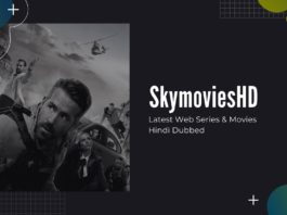 SkymoviesHD Movies Download Hindi